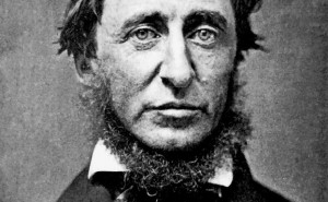 William David Thoreau: The man who's records were used in the study - Massachusets Archives
